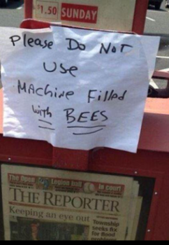 News rack with bees (2).png